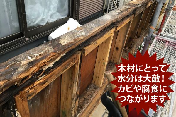 木材にとって水分は大敵!カビや腐食につながります