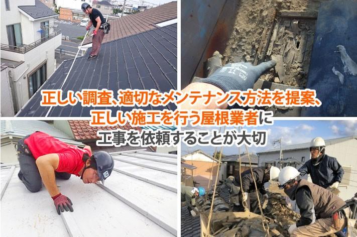 正しい調査、適切なメンテナンス方法を提案、正しい施工を行う屋根業者に工事を依頼することが大切