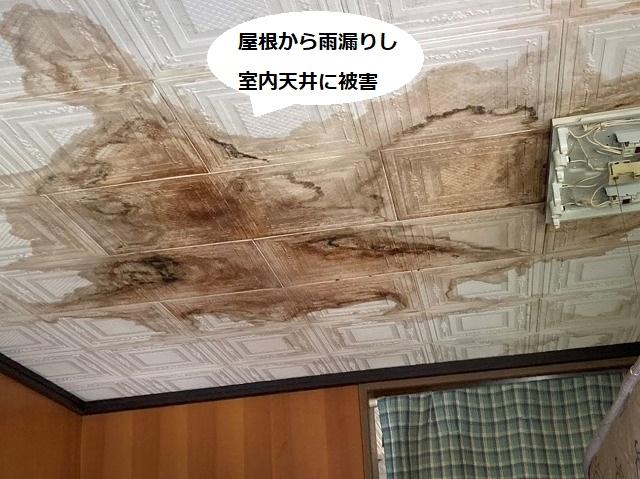 屋根からの雨漏りにより室内天井に広範囲に染みが出た様子