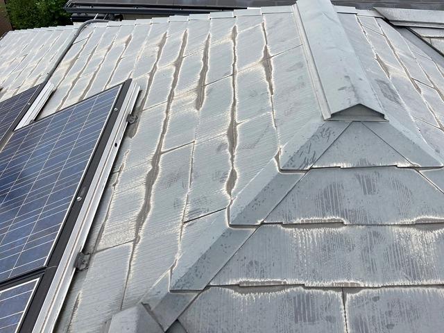 先端が黒ずんでいる太陽光パネルが設置されたコロニアル屋根