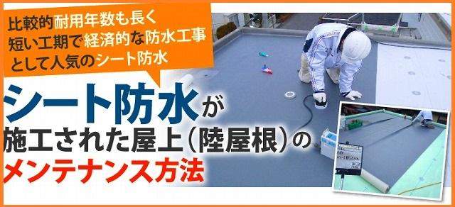 シート防水のメンテナンス方法