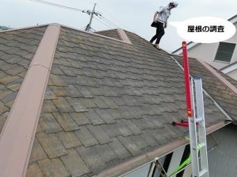 結城市で屋根の現場調査を行っているスタッフ