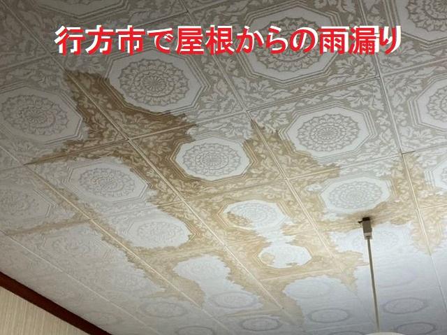 行方市の現場の室内雨漏り被害