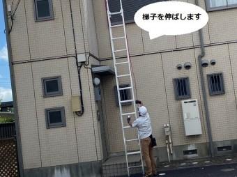 二連梯子を赤いロープを引きながら伸ばすスタッフ