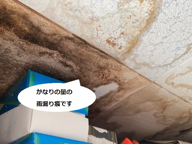 天井に大量の雨漏り痕がある様子