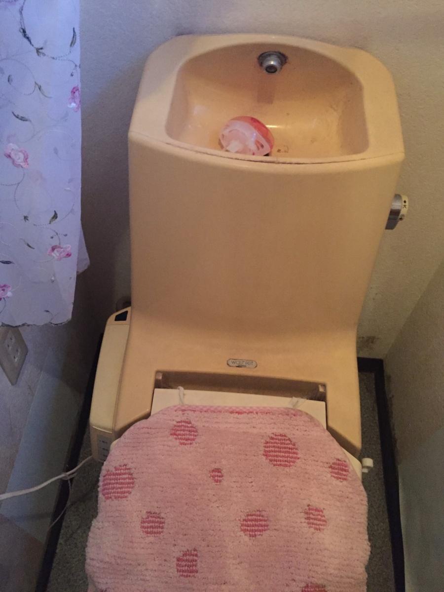 追加工事を依頼された既存のトイレ