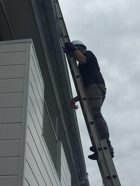 梯子で屋根に上がる調査員