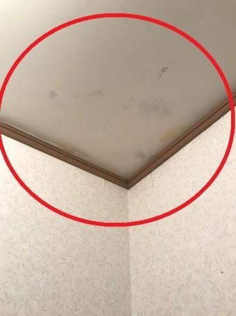 室内雨漏り箇所①