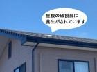 屋根の破損部に養生されているのが目視で確認できる
