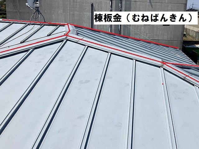 棟板金を赤いラインで解説した画像