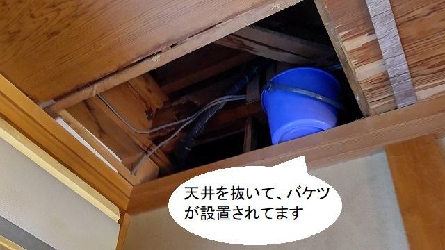 天井にバケツを置き水漏れ対策