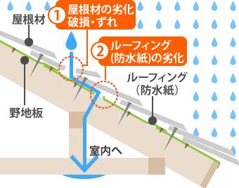 屋根からの雨漏り経路を記したイラスト