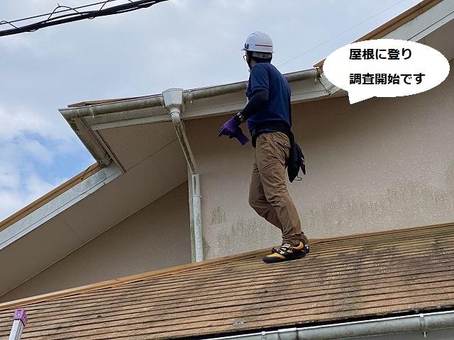 ひたちなか市でコロニアル屋根と雨樋が台風で破損したとのご相談