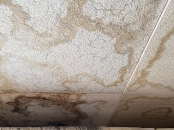 天井一面に広がっている雨漏りの痕