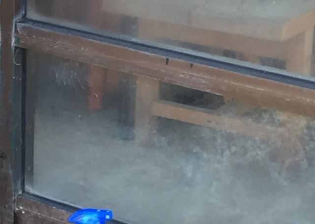 ガラス花粉汚れ