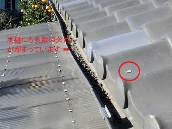 屋根に漆喰が落下