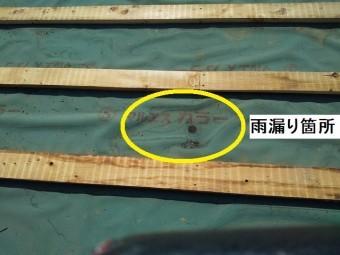 雨漏りの原因箇所である屋根下地の防水シート破損