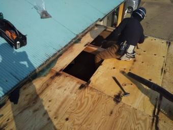 屋根下地である野地板を解体する職人