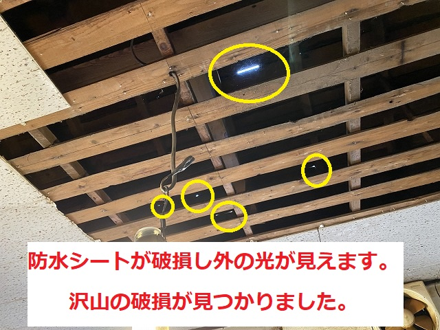 天井材を撤去すると屋根部から光が見える