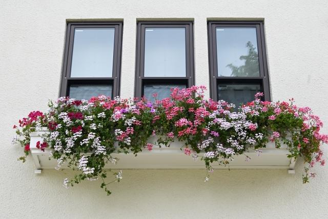 フラワーボックスに綺麗に飾られた花のイメージ画像