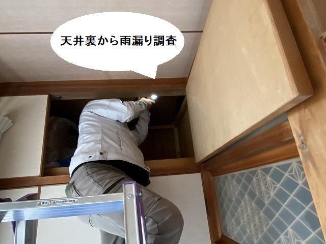 後日行った天井裏からの雨漏り調査の様子