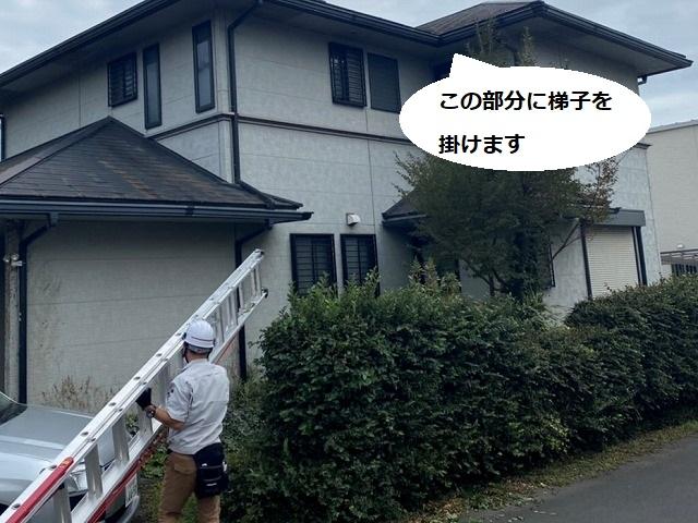 屋根に登るために梯子を運ぶ調査スタッフ