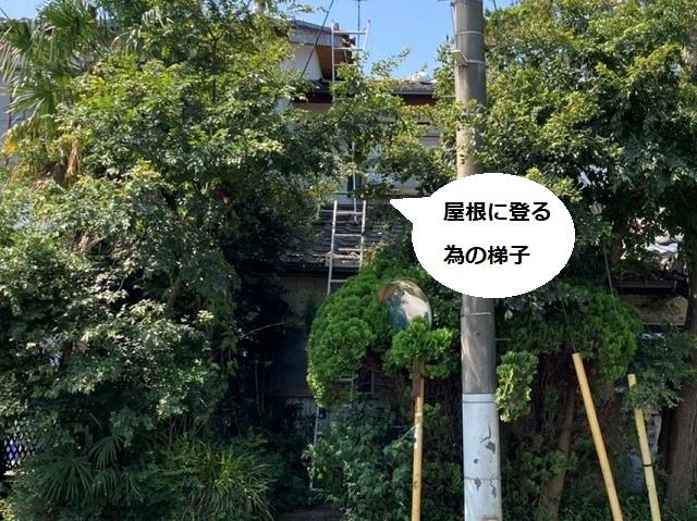 茨城町で屋根を調査する為に掛けられたハシゴ