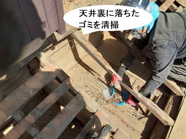 天井裏に落ちたゴミを清掃するスタッフ