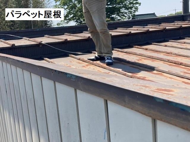 結城市のパラペット屋根を調査するスタッフ