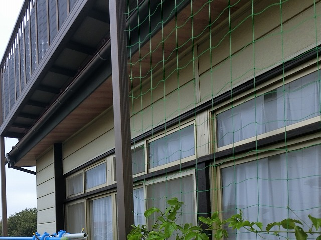 室内の雨漏り箇所の外側風景