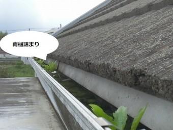 石岡市のアパートの北側の大型雨樋は苔詰まりを起こしている