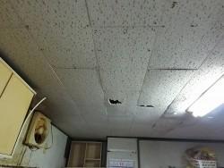 天井材穴あき画像遠めから
