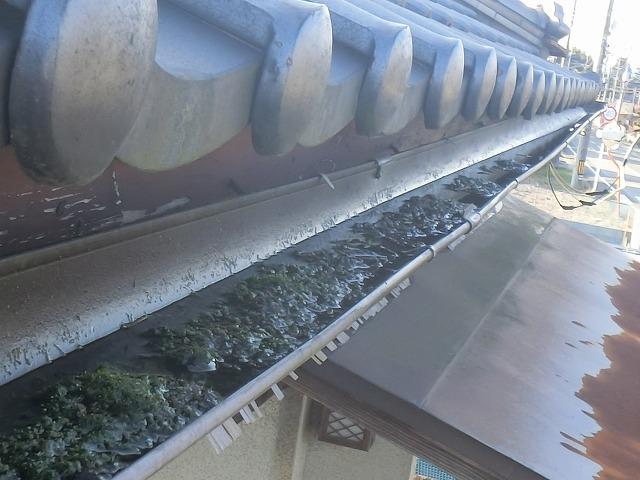 玄関上の軒樋が排水不良