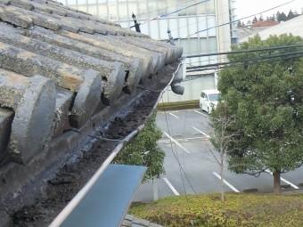 半丸雨樋東側