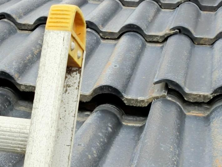 職人が梯子を掛け屋根の状況を確認
