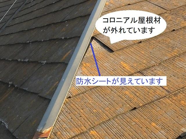西側の降り棟板金付近のコロニアル屋根材が外れている