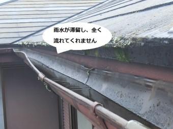 雨樋を上から覗くと雨水が滞留しているのが分かります