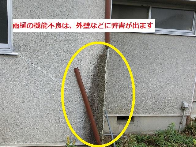 竪樋が外れ外壁に水が染みこんでしまった