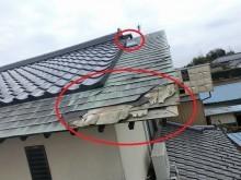 屋根被害1