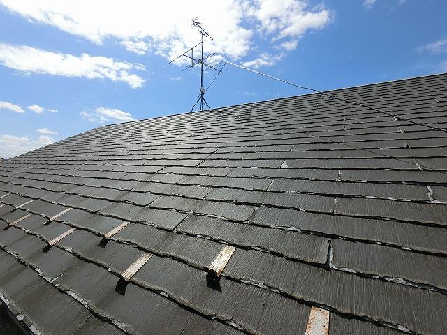 屋根に登り屋根の全景を確認
