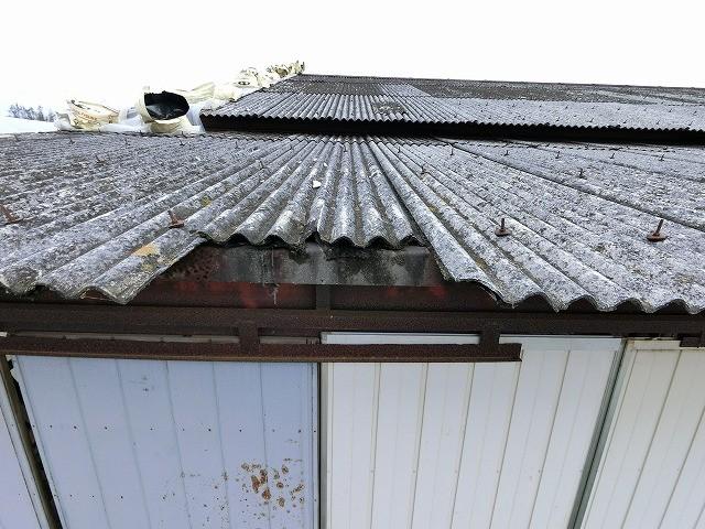 台風で飛散した倉庫に現場調査でお伺いした際に撮った屋根の破損画像