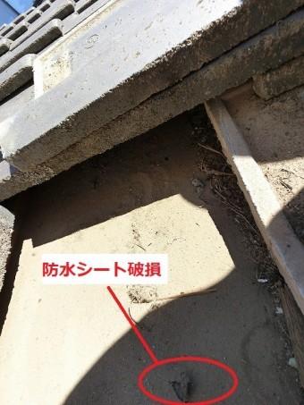 瓦を捲ると防水シートに破損部を発見