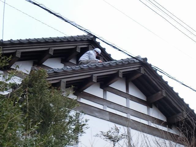 雨漏り箇所を特定する為屋根に登り部位を覗き込む調査員