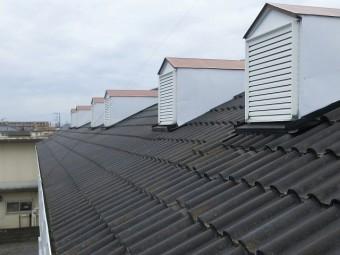 問題の屋根の全景