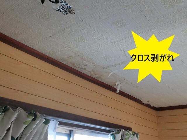 天井クロスが剥がれ落ちてきている筑西市の雨漏り現場