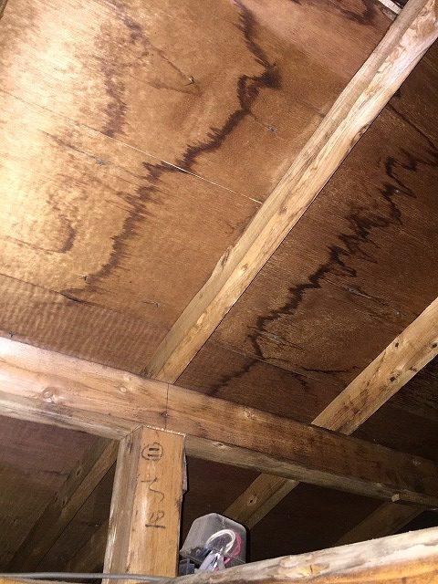 屋根裏から見た屋根材下の野地板の雨染み一枚目