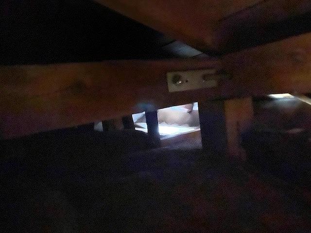 真っ暗な屋根裏から自然光が射している