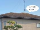 屋根リフォーム依頼のあった調査対象屋根のパミール