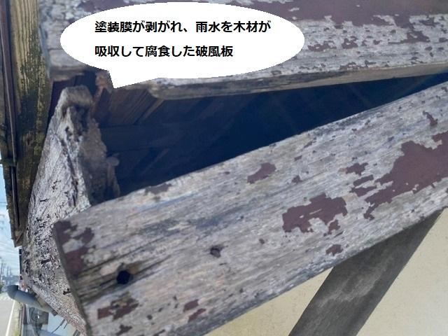 塗装膜も剥がれ木材に雨水が浸水し木割れを起こした破風板