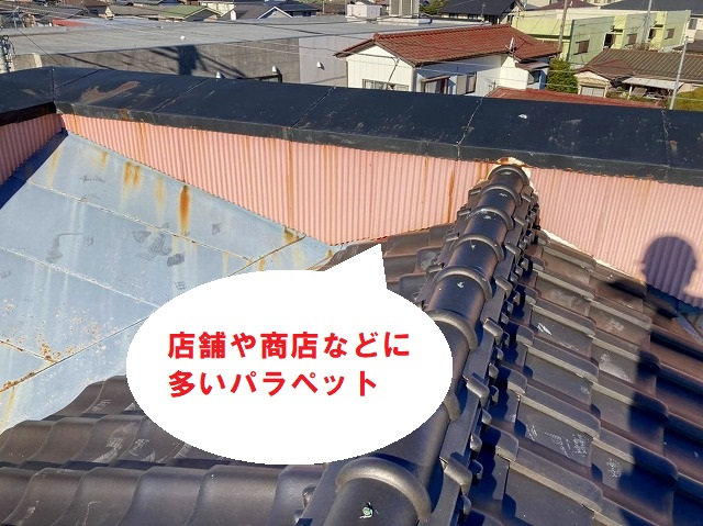 2連梯子を使用し屋根の上に登ります